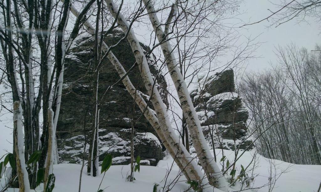 冬の夫婦岩